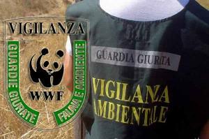 Guardie eco-zoofile e problemi
