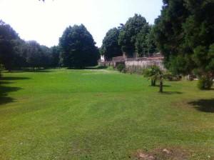 Giardino della famiglia Carnicelli, ex vivaio Fedi. Oltre il muro corre Via Baroni