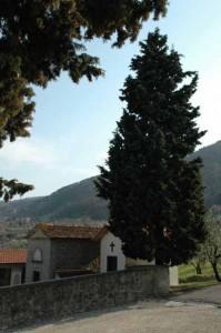 Il cimitero di Montemagno