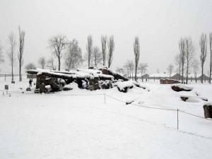 L'area delle camere a gas (fatte saltare) a Birkenau