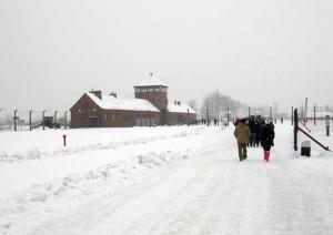 Appena dentro il recinto di Birkenau...