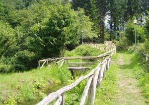 Il sentiero della ferriera di Pontepetri