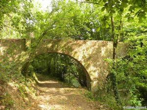 La valle del torrente Cessana